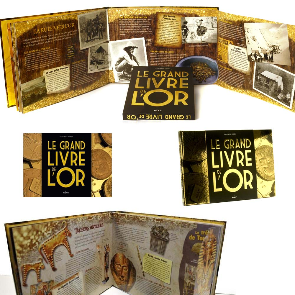 Le grand livre de l'or